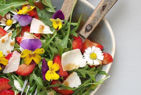 Décorer mes plats de fleurs comestibles