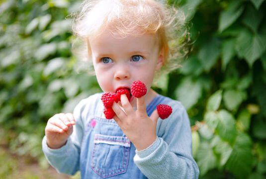Grappiller des petits fruits