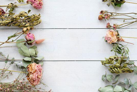 Décorer de fleurs et feuilles séchées