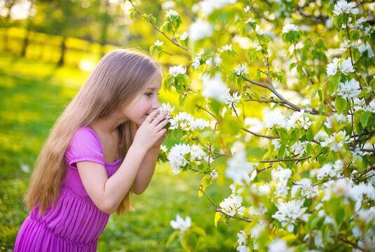 Apprécier les parfums du jardin