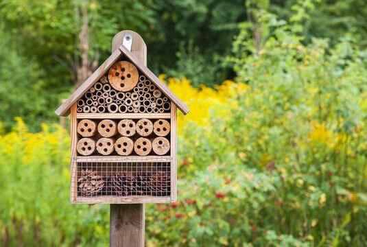 Assortiments favorisant la biodiversité