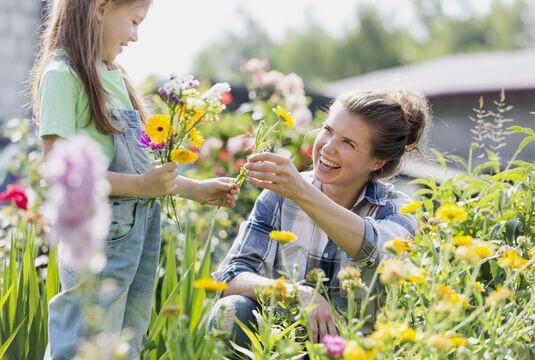 Assortiments fleuris