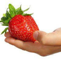 La fraise géante